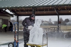 fire n ice ice carver
